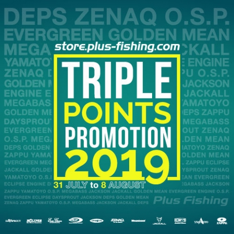 Summer 2019 Triple Points Promotion