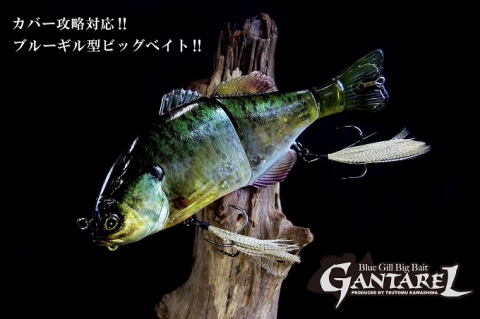 GANTAREL - Blue Gill Big Bite by Jackall new color